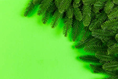 Top view of colorful festive background made of fir tree branch. Christmas holiday concept with copy space.