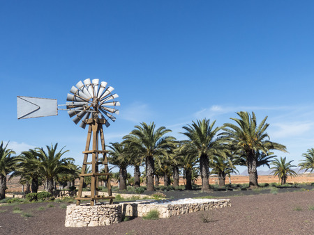 water wheel: Wind mill producing water out of a well in palm oasis in a dessert. Stock Photo