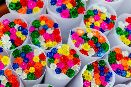 Colorful little flowers  photo