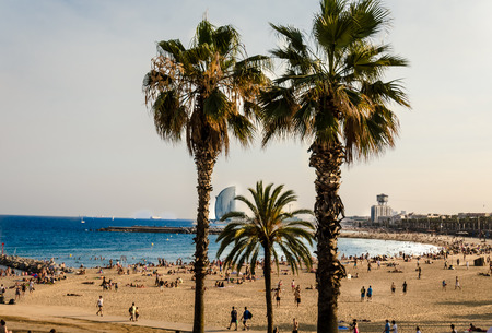 Palm Beach In Barcelona Spain