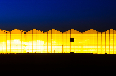 Greenhouse plant at night. Night landscape luminous glass construction. Silhouette of road signs on a background of a facade of a hothouse Stock Photo