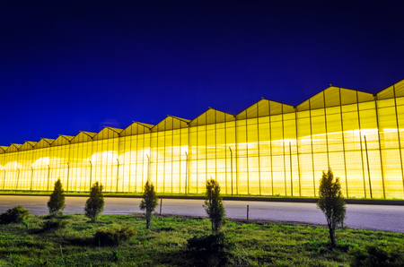 Gewächshausanlage in der Nacht. Nachtlandschaft leuchtende Glaskonstruktion. Standard-Bild - 79629379