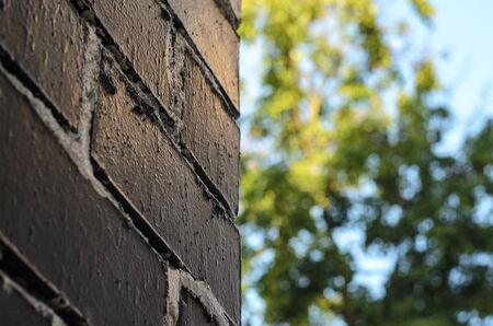Rough brick wall painted in black with painting seams in white. Abstract summer blur background