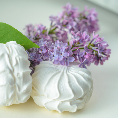 White marshmallow and a twig of lilac on a white background. Fresh spring still life