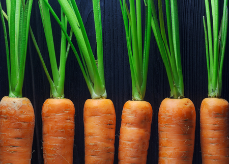 Fresh carrots densely packed near each other pattern. Carrot texture for background