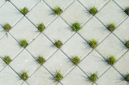rectangle: Square Grey Concrete Cobblestones with Holes for Grass Top View. Grey Cobblestone Texture. Landscaping Element Background Concept