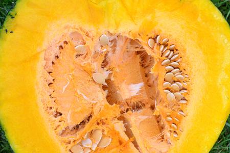Texture of the Cut Pumpkin, Close-Up. The Insides of a Pumpkin. Cutting Pumpkin Background
