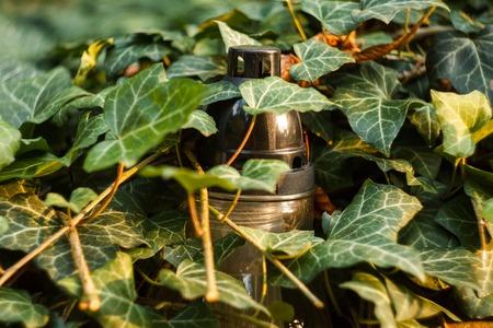 Ritual Candle Lantern in Dense Thickets of Ivy. Glyph of Prayer of Usobshim 版權商用圖片