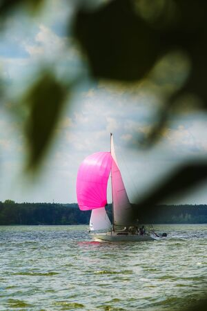 A small sailing yacht with a pink spinnaker and white sails goes to the bay on a sleepy day against the backdrop of a dense forest on the opposite bank Banco de Imagens