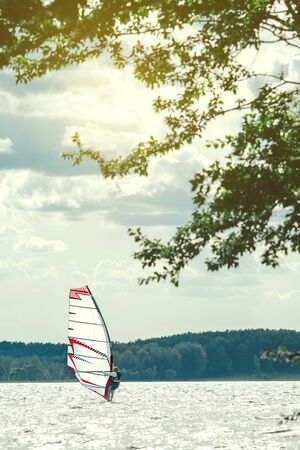 Windsurfer catches the wind and cuts the waves while driving fast. View from the shady shore from the branches of coastal trees Reklamní fotografie