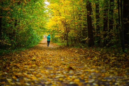 A woman athlete run in the autumn forest. Jogging in an amazing autumn forest strewn with fallen leaves 版權商用圖片 - 132620988