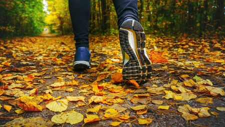 Jogger's feet in blue sneakers close up. A woman athlete run in the autumn forest. Jogging in an amazing autumn forest strewn with fallen leaves 版權商用圖片 - 132621055