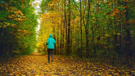 A woman athlete run in the autumn forest. Jogging in an amazing autumn forest strewn with fallen leaves 版權商用圖片 - 132621441