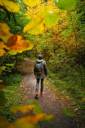 A man with backpack walks in the amazing autumn forest. Hiking alone along autumn forest paths. Travel concept.