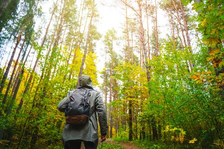 A man with backpack walks in the amazing autumn forest. Hiking alone along autumn forest paths. Travel concept. 版權商用圖片 - 132622563