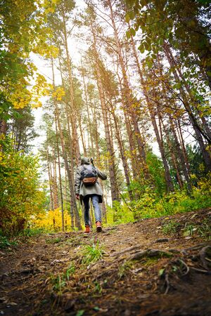 Nature photographer with a tripod on his shoulder and backpack climbs the slopein the amazing autumn forest. Hiking alone along autumn forest paths. Travel concept. 版權商用圖片 - 132623860