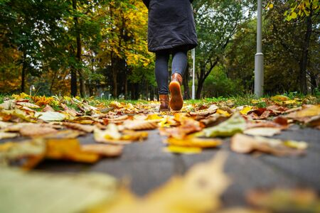 A woman in black jacket walking in a park along the sidewalk strewn with fallen leaves. The concept of turnover seasons. Weather background