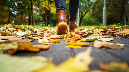 Back view on the feet of a woman in black pants and brown boots walking in a park along the sidewalk strewn with fallen leaves. The concept of turnover seasons. Weather background 版權商用圖片 - 132630018