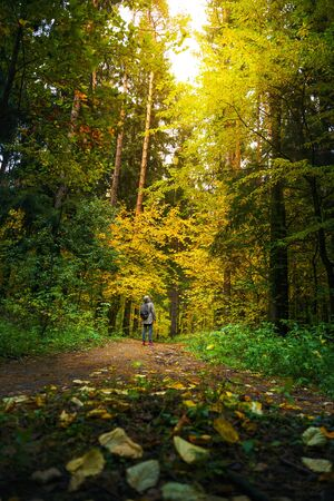 A man with backpack walks in the amazing autumn forest. Hiking alone along autumn forest paths. Travel concept. 版權商用圖片 - 132632907