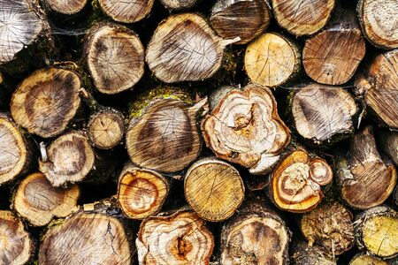 A pile of stacked firewood. Deforestation background