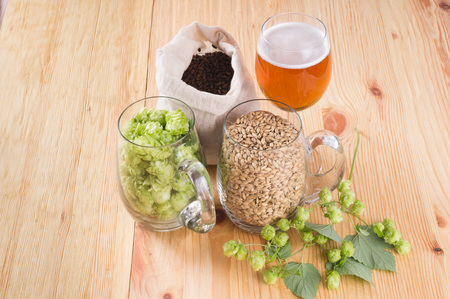 Glass of beer, cones of hop, pale caramel malt in glass mugs and chocolate malt in bag, Ingredient in craft beer brewing from grain barley malt. Stockfoto - 108009485