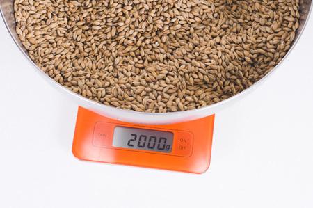 malt in a steel bowl on orange scales. Craft beer brewing from grain barley pale malt in process. Ale or lager ingredients Stok Fotoğraf