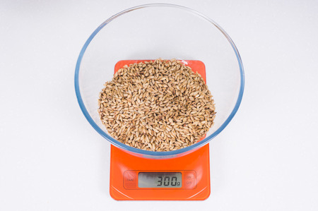malt in glass bowl on orange scales. Craft beer brewing from grain barley pale malt in process. Ale or lager ingredients