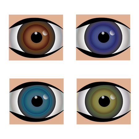 eyeballs: different color of eyeballs