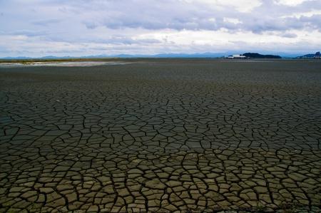 land with dry cracked ground  Standard-Bild