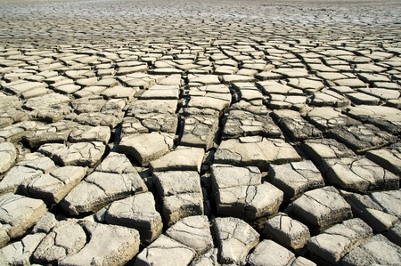 desiccation: The dry earth