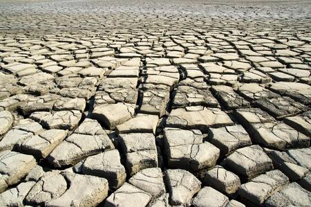 tarnish: The dry earth