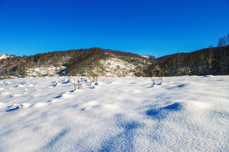 Meadow covered with snow in the mountains in winter. photo