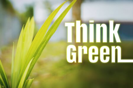 Think Green. Eco Green Environmental Concepts. Green Leaves Against Blurred Background. Banco de Imagens