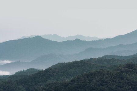 Morning View Misty Borneo Rainforest in Sabah Banco de Imagens
