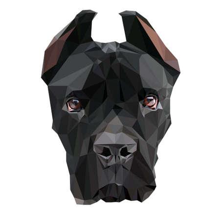 Low Poly. Portrait of a puppy Cane Corso