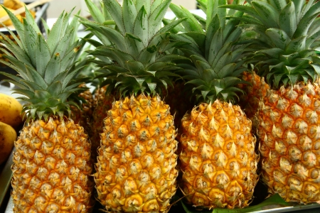 Pineapples in row Stock Photo
