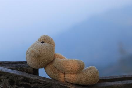 Bear doll in blurred background Фото со стока