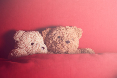 A couple of bear dolls sleep in red bed