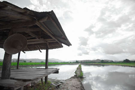 cloud scape: Old hut in rice field farm, cloud scape with reflection in water Stock Photo