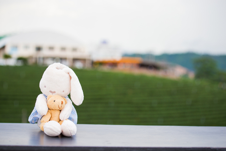 Teddy bear doll with natre landscape Stock Photo