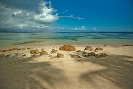 Amazing landscape in the wil beach Playa Bonita, Las Terrenas, Dominican Republic