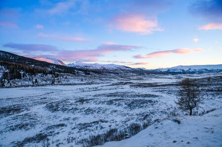pink sunset: The pink sunset mountains and a snow field in shadow Stock Photo