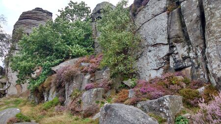 Peak District Rock Formations and Purple Heather, UK, Europe