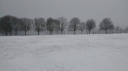 Winter Park Scene:  Snow, Trees, Football Pitch