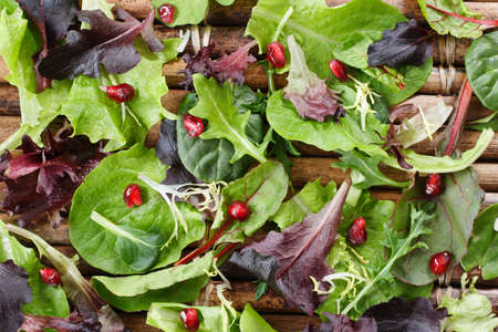 Variety of organic  lettuce leaves sprinkled with pomegranate seeds