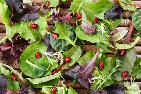 Vielzahl von organischen Salatblätter bestreut mit Granatapfelkernen Standard-Bild - 2917353
