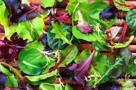 Close-up van groene salades Stockfoto