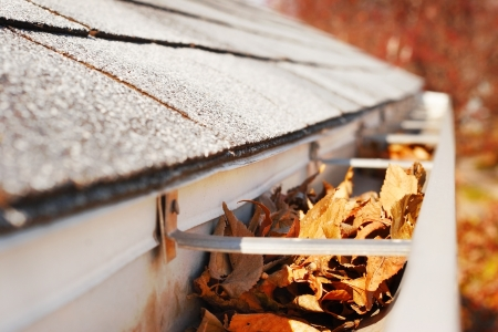 Close-up of a rain gutter that is full of leaves