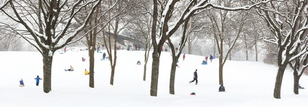 blustery: People sledding on a wooded hill
