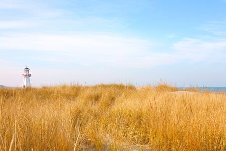 a close up of dune grass overlooking Lake Michigan  a light house juts out above the dune
